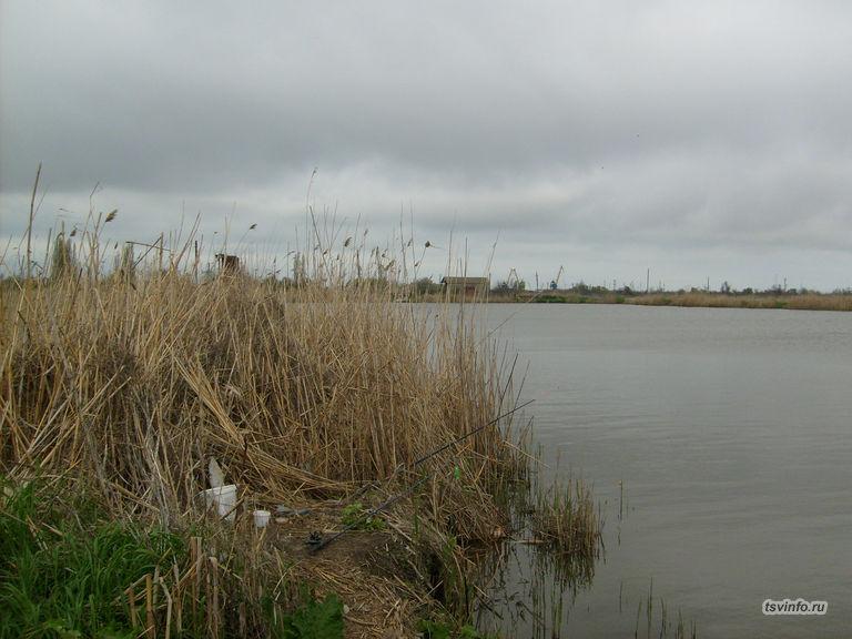 Платный пруд в Темрюке