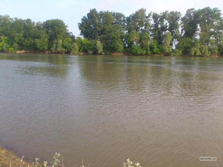 Река Кубань 2015