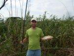 Рыбалка в Голубой ниве (Берестоватый канал)
