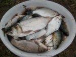Неплохой такой наборчик для рыбалки на новогодних каникулах!