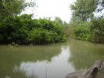 Река Курка