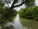 Рыбалка на реке Курка (Светлый)