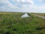 Рыбалка на каналах рисовой системы (Первомайский)